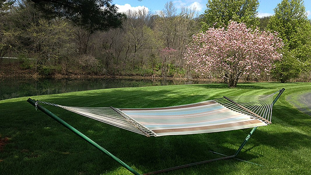 A hammock for two on green grass with a pink flowering tree behind it